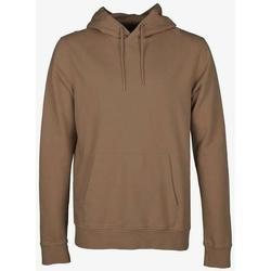 tekstylia Bluzy Colorful Standard Sweatshirt à capuche  Sahara Camel marron clair