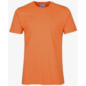 tekstylia T-shirty z krótkim rękawem Colorful Standard T-shirt  Burned Orange orange