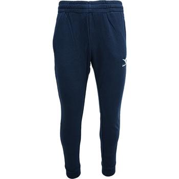 tekstylia Męskie Spodnie dresowe Diadora Cuff Core Niebieski
