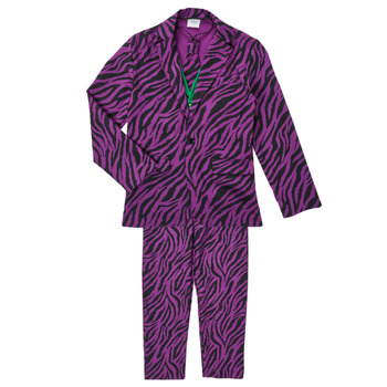 tekstylia Chłopiec Kostiumy Fun Costumes COSTUME ADOLESCENT LE MECHANT Wielokolorowy