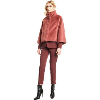tekstylia Damskie Kurtki lekkie Gaudi 121FD39004 Czerwony