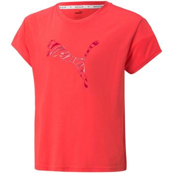 tekstylia Dziecko T-shirty z krótkim rękawem Puma 589212 Czerwony