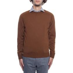 tekstylia Męskie Swetry Fioroni MK00DDQA2 Brązowy