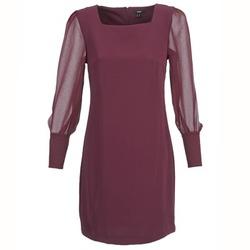 tekstylia Damskie Sukienki krótkie Mexx JAJAVA Bordeaux
