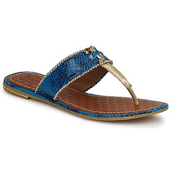 Buty Damskie Sandały Juicy Couture ADELINE Bright / Blue / Snake