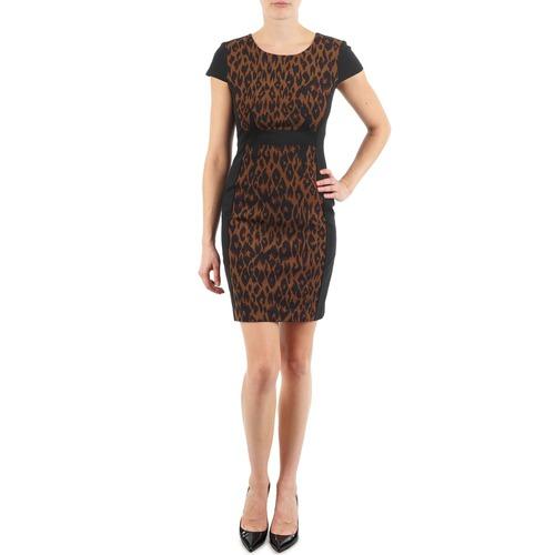 tekstylia Damskie Sukienki krótkie Manoukian EMMA Czarny / Leopard