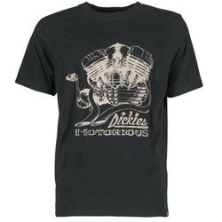 tekstylia Męskie T-shirty z krótkim rękawem Dickies BRIDGEVILLE Czarny