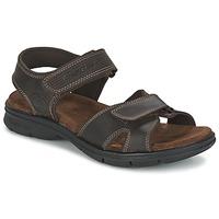 Buty Męskie Sandały Panama Jack SANDERS Brązowy