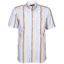 tekstylia Męskie Koszule z krótkim rękawem Pierre Cardin 539936240-130 Niebieski / Beżowy / Brązowy