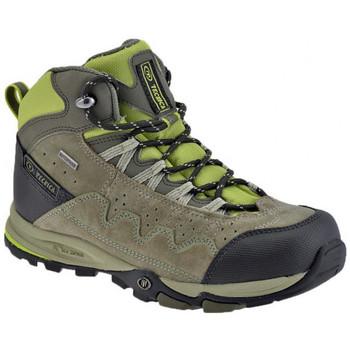 Buty Chłopiec Trekking Tecnica  Zielony