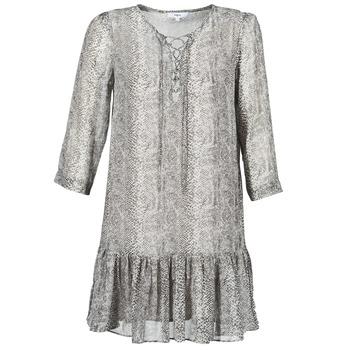 tekstylia Damskie Sukienki krótkie Suncoo CIARA Szary