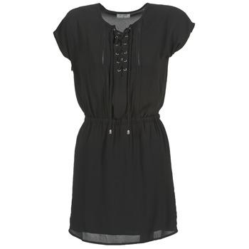 tekstylia Damskie Sukienki krótkie Betty London FELONINE Czarny