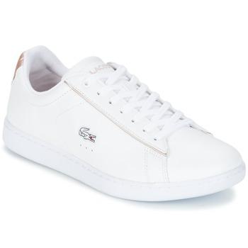 Buty Damskie Trampki niskie Lacoste CARNABY EVO 217 2 Biały / Różowy