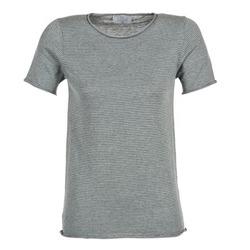 tekstylia Damskie T-shirty z krótkim rękawem Casual Attitude GENIUS Szary