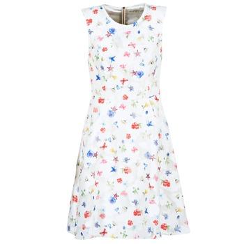 tekstylia Damskie Sukienki krótkie Derhy MAESTRIA Biały