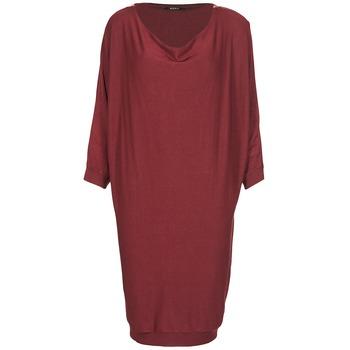 tekstylia Damskie Sukienki krótkie Kookaï BLANDI Bordeaux