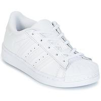 Buty Dziecko Trampki niskie adidas Originals SUPERTSAR Biały