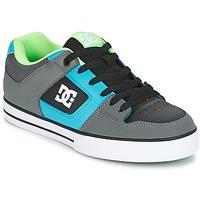 Buty Męskie Buty skate DC Shoes PURE Szary / Zielony / Niebieski