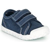 Buty Chłopiec Trampki niskie Chicco CAMBRIDGE Niebieski