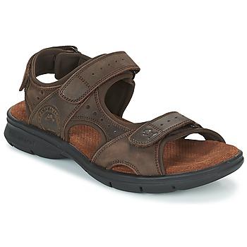 Buty Męskie Sandały Panama Jack SALTON Brązowy