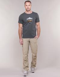 tekstylia Męskie Spodnie bojówki Columbia SILVER RIDGE II CARGO PANT Beżowy