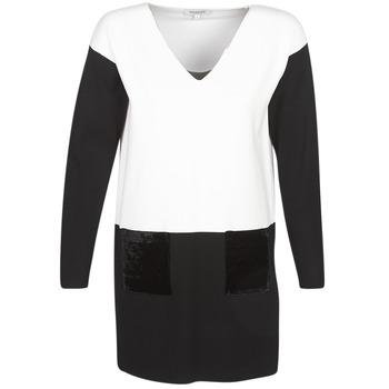 tekstylia Damskie Sukienki krótkie Morgan RMAOLI Wielokolorowy