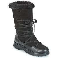 Buty Damskie Śniegowce Geox D HOSMOS B ABX Czarny