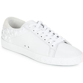 Buty Damskie Trampki niskie Ash DAZED Biały